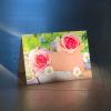 komplimentka přání růžové růže