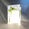 komplimentka přání zelená mašle